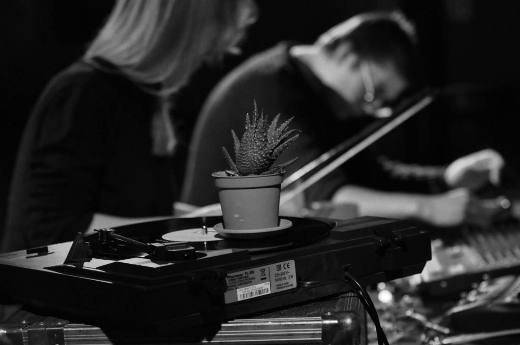 Eufonia Pseudolarix na festiwalu Musica Privata. Zdjęcie: Paweł Sokołowski.